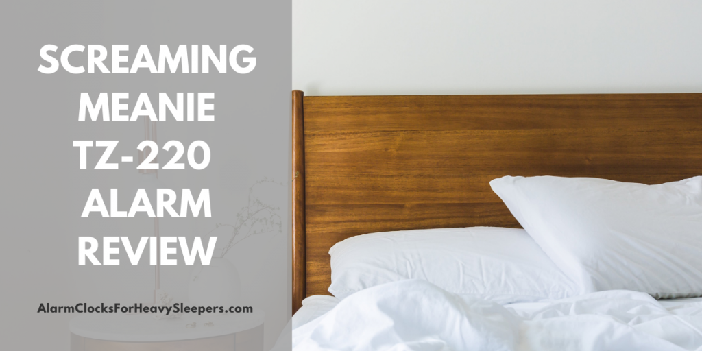 Screaming Meanie TZ-220 Alarm Review - Featured Image